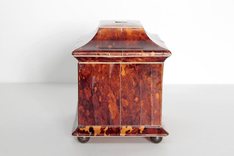 Regency 19th Century English Tortoise Shell Tea Caddy For Sale