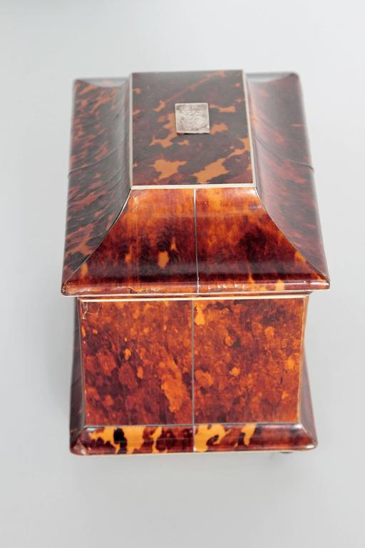 19th Century English Tortoise Shell Tea Caddy In Good Condition For Sale In Dallas, TX