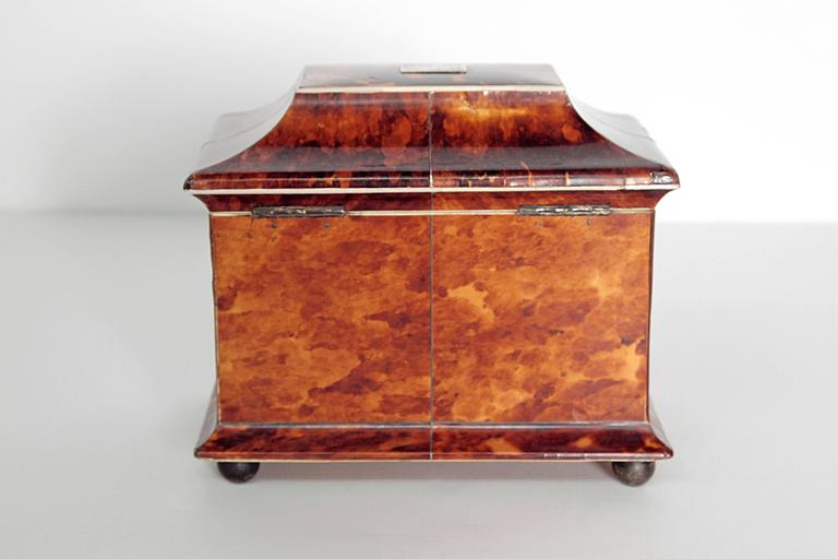 Sterling Silver 19th Century English Tortoise Shell Tea Caddy For Sale
