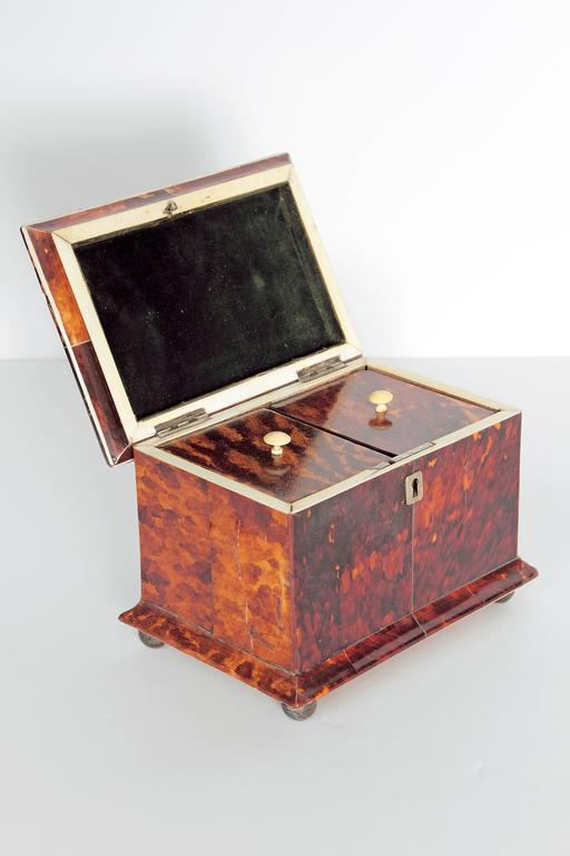 19th Century English Tortoise Shell Tea Caddy For Sale 1