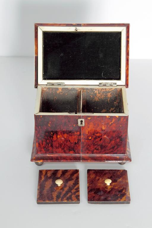 19th Century English Tortoise Shell Tea Caddy For Sale 2