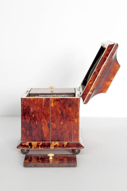 19th Century English Tortoise Shell Tea Caddy For Sale 3