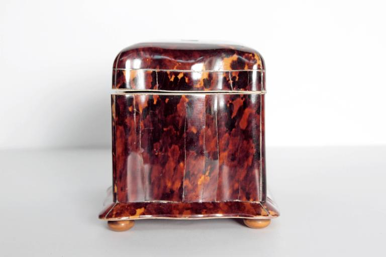 Inlay 19th Century English Regency Tortoiseshell Tea Caddy For Sale