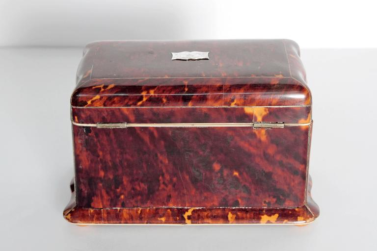 19th Century English Regency Tortoiseshell Tea Caddy In Good Condition For Sale In Dallas, TX
