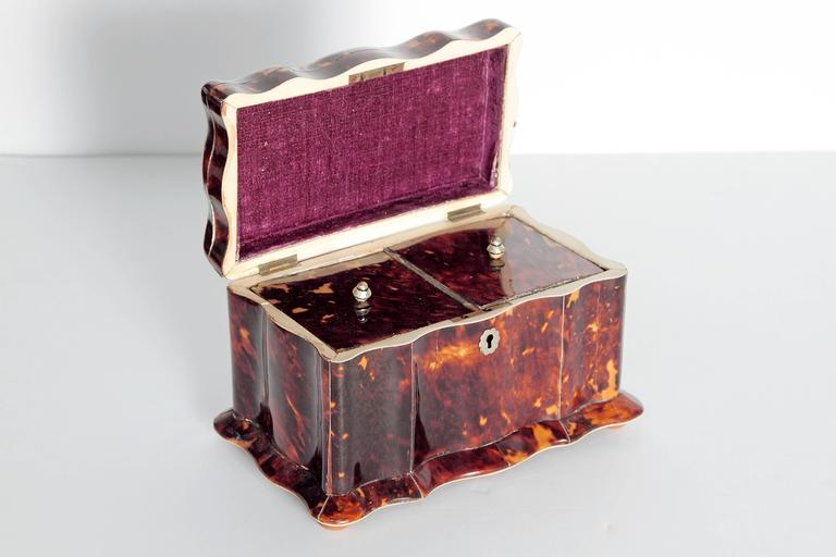 Sterling Silver 19th Century English Regency Tortoiseshell Tea Caddy For Sale