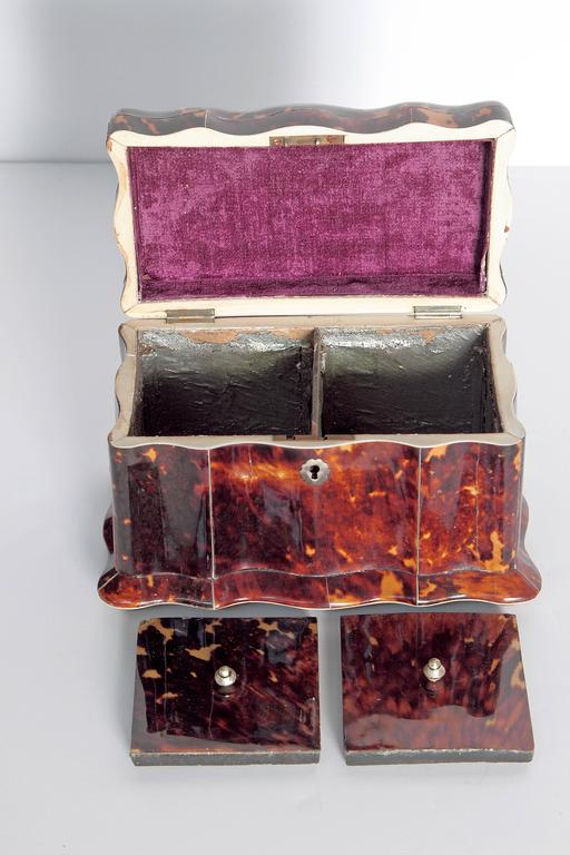 19th Century English Regency Tortoiseshell Tea Caddy For Sale 1