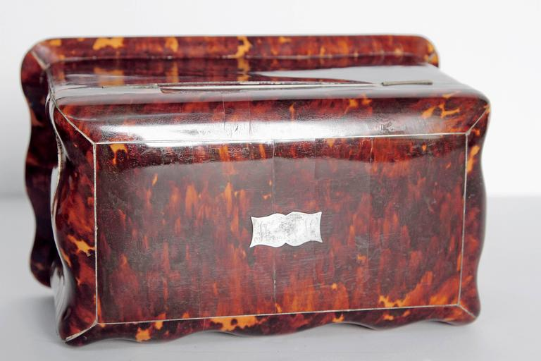 19th Century English Regency Tortoiseshell Tea Caddy For Sale 2