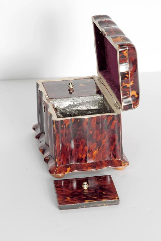 19th Century English Regency Tortoiseshell Tea Caddy For Sale 5