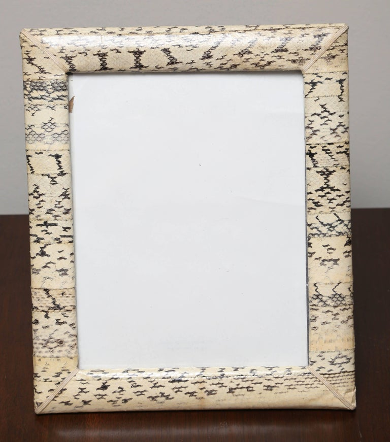 "A Classic frame with silk moire backing and easel. Snakeskin is 1.5 ""wide."
