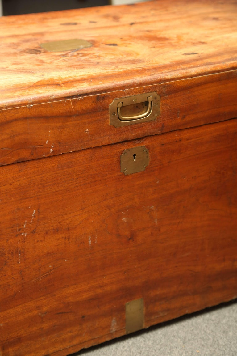19th Century Campaign Chest For Sale 1