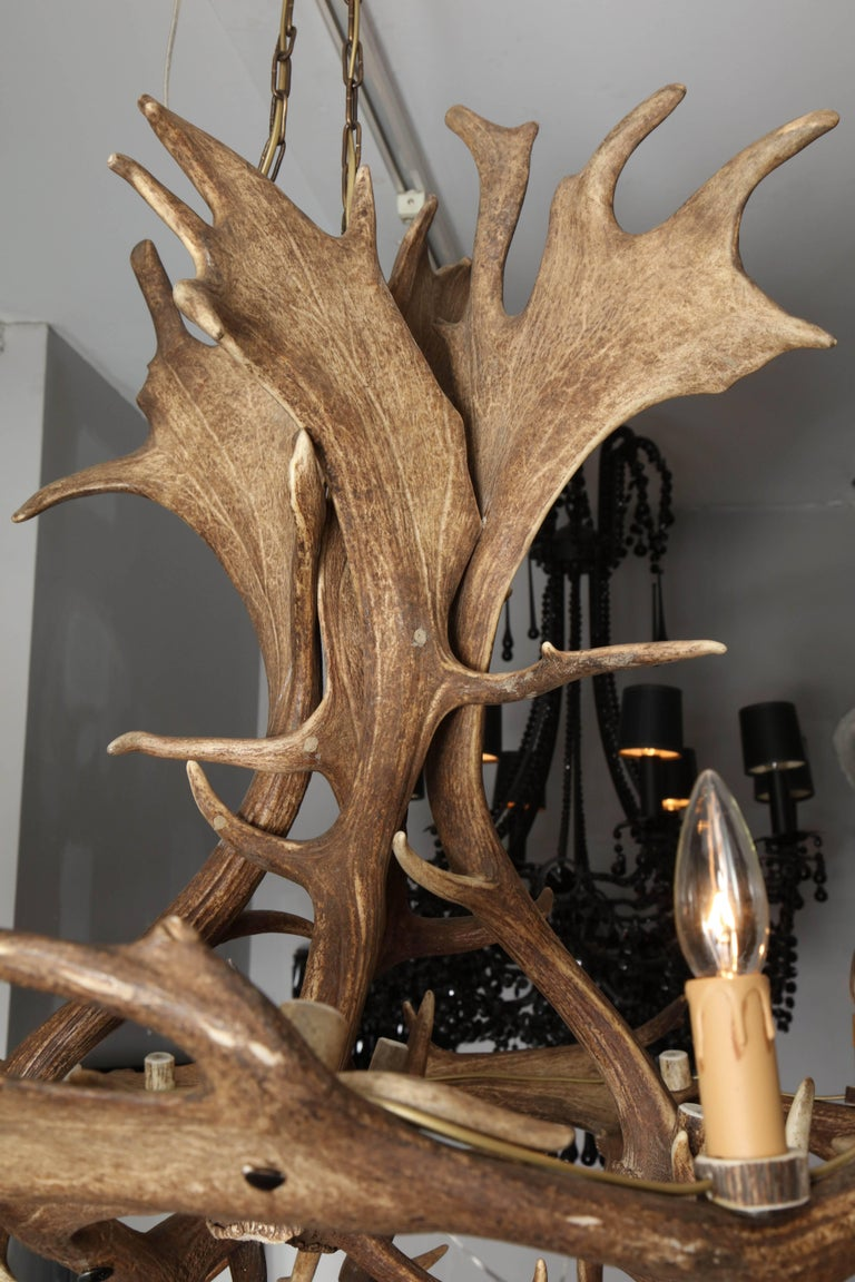 Spectacular natural elk antler chandelier at 1stdibs spectacular natural elk antler chandelier in excellent condition for sale in new york ny aloadofball Images
