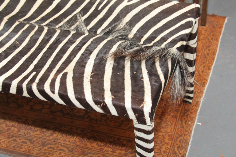 Striking black and white zebra coffee table or bench. Generous length shows of the beauty of the hide and works well as table or at the foot of a bed.
