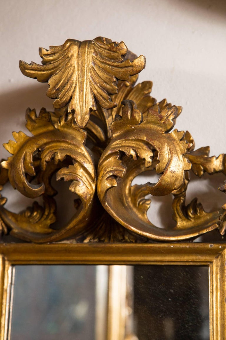 19th Century Antique Italian Giltwood Mirror For Sale