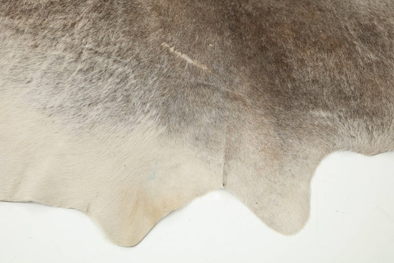 Cow Hide Rug, Offered by Area ID 4