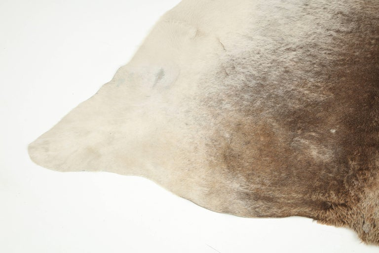 Cow Hide Rug, Offered by Area ID 5
