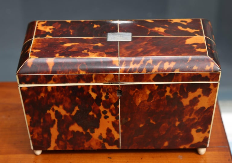 Fine Georgian Tea Caddy In Good Condition For Sale In West Palm Beach, FL