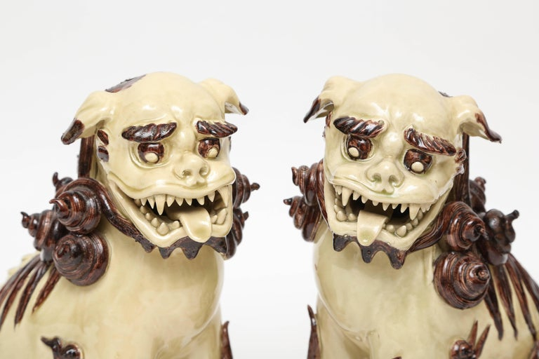 20th Century Pair of Glazed Terra Cotta Foo Dogs For Sale
