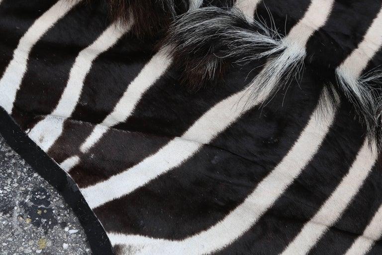 Zebra Hide Fine Burchell Zebra Rug For Sale