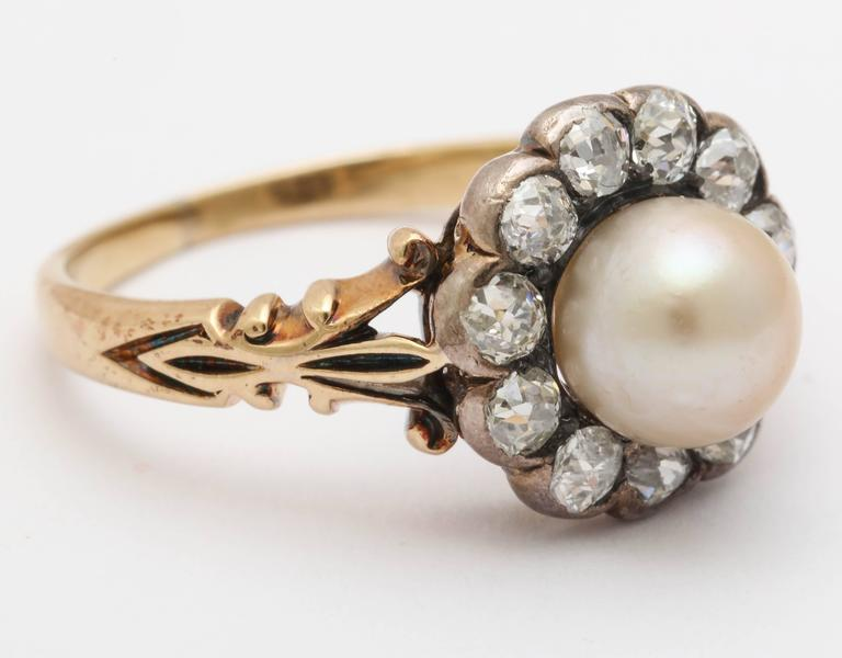 Late Victorian Pearl, Diamond Cluster Ring 3