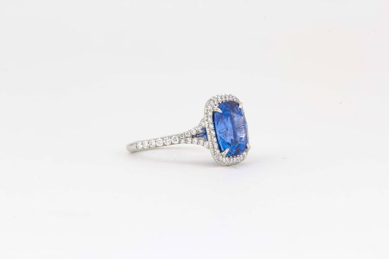 Incredible AGL Certified 6.50 Carat Ceylon Sapphire Ring In New Condition For Sale In New York, NY