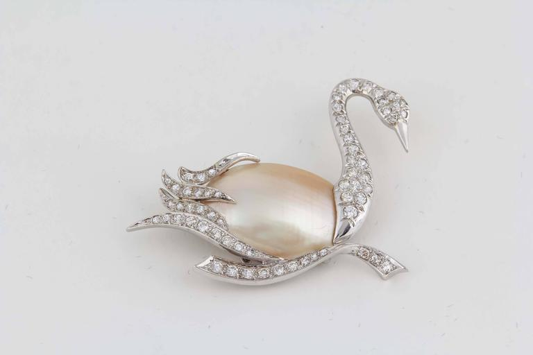 1940's Fantasy,Platinum & Diamond Figural Swan Brooch With Pearl Body 4