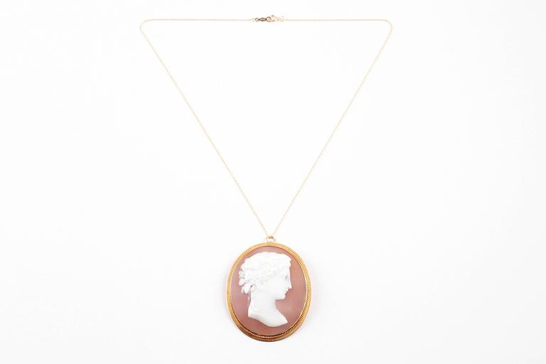 Early Twentieth Century shell cameo in an elegant gold frame.  The cameo is suspended on a 14 Karat yellow gold  filled18 inch chain and can also be worn as a brooch.