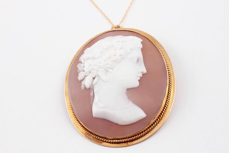 Shell Cameo Brooch Pendant on Yellow Gold Filled Chain For Sale 1