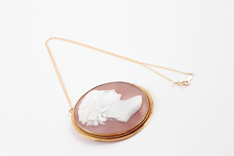 Shell Cameo Brooch Pendant on Yellow Gold Filled Chain For Sale 4