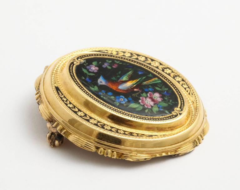 Painted Enamel Bird of Paradise Gold Pin, circa 1870 For Sale 2