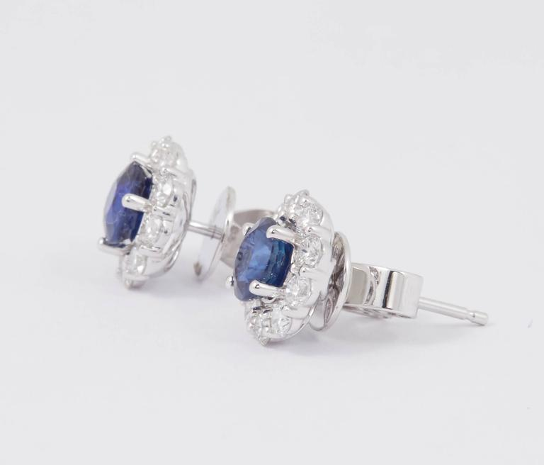 Sapphire and Diamond Studs Earrings 1.00 Carat For Sale 2