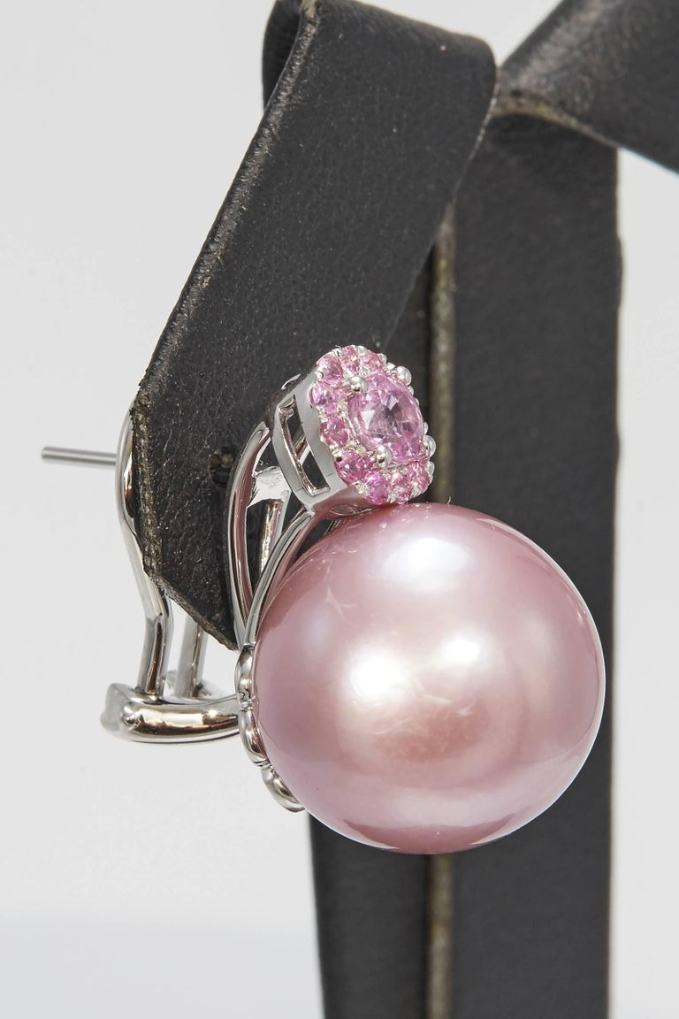 Contemporary Pink Freshwater Pearl and Pink Sapphire Drop Earrings For Sale