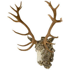 19th Century Red-Deer Horns on Gilt Mount