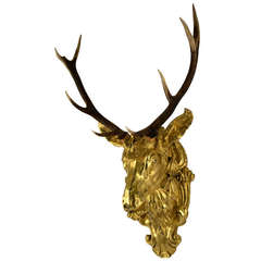 19th Century Red Deer Antlers Mounted on Gilt Stag Head
