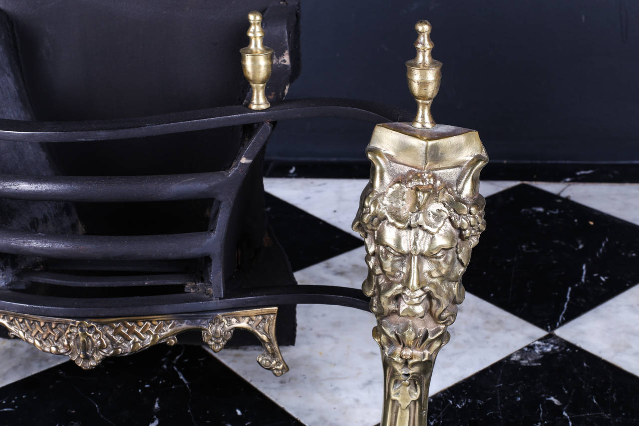 Decorative rococo style brass and steel fire basket at 1stdibs for Rococo decorative style