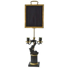 Empire Gilt and Patinated Bronze Reading Lamp