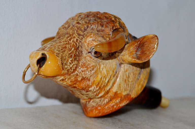 British 19th Century Bull Meerschaum Pipehead with its Box For Sale
