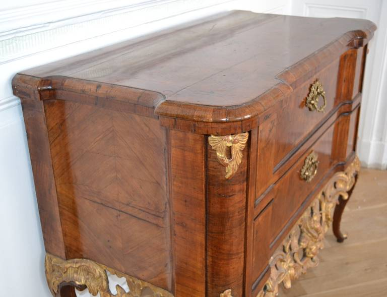 Gilt 18th Century Altona Chest Of Drawer, Germany And Denmark For Sale
