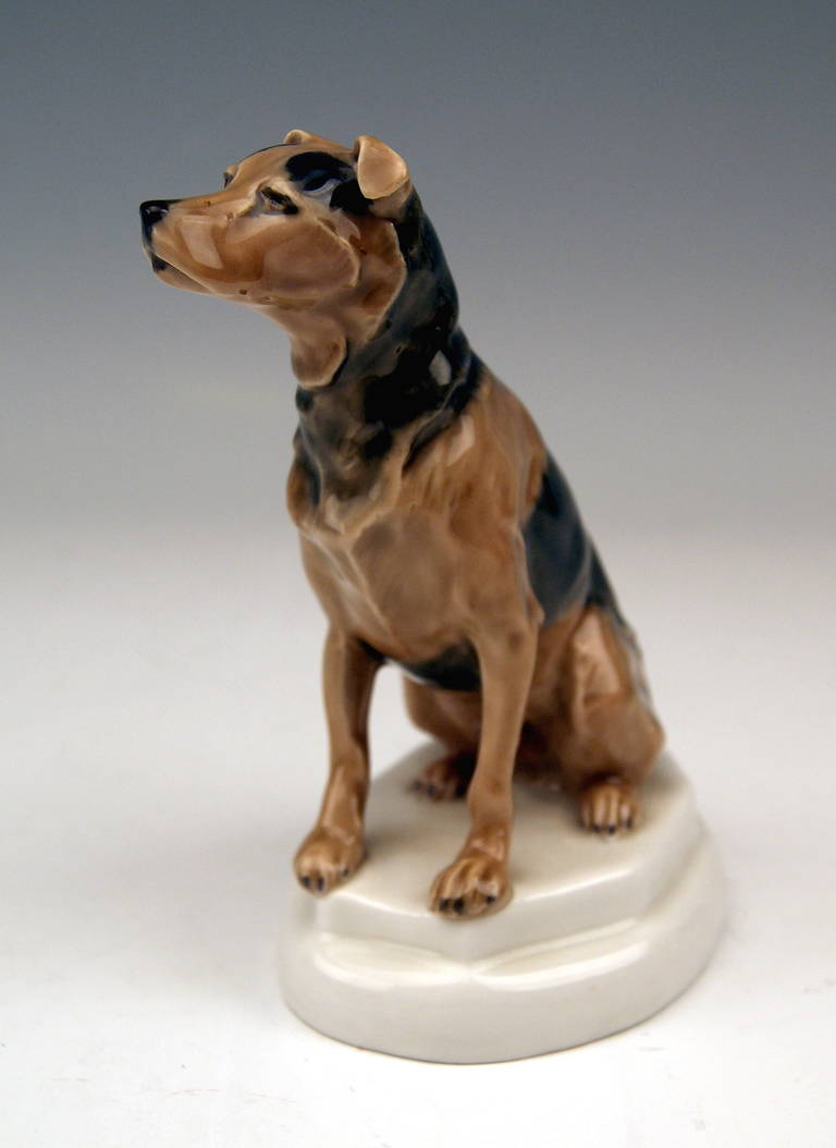 German Meissen Lovely Dog Figurine Terrier by Paul Walther made c. 1935 For Sale