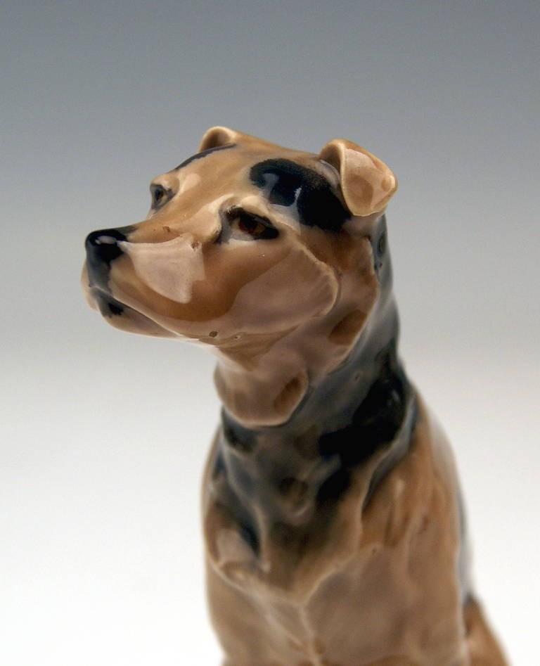Mid-20th Century Meissen Lovely Dog Figurine Terrier by Paul Walther made c. 1935 For Sale
