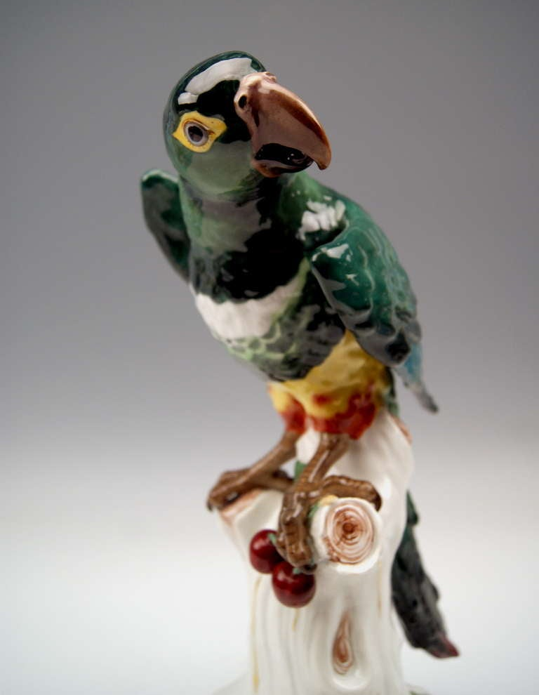 Porcelain Meissen Animal Figurine Parrot Macaw 19th Century, Kaendler For Sale
