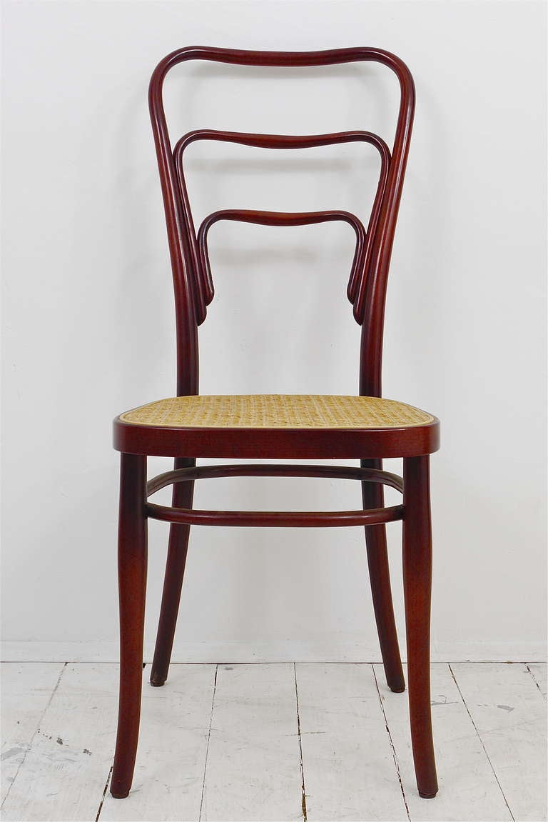 set of 6 adolf loos thonet vienna caf museum art nouveau bentwood chairs 3