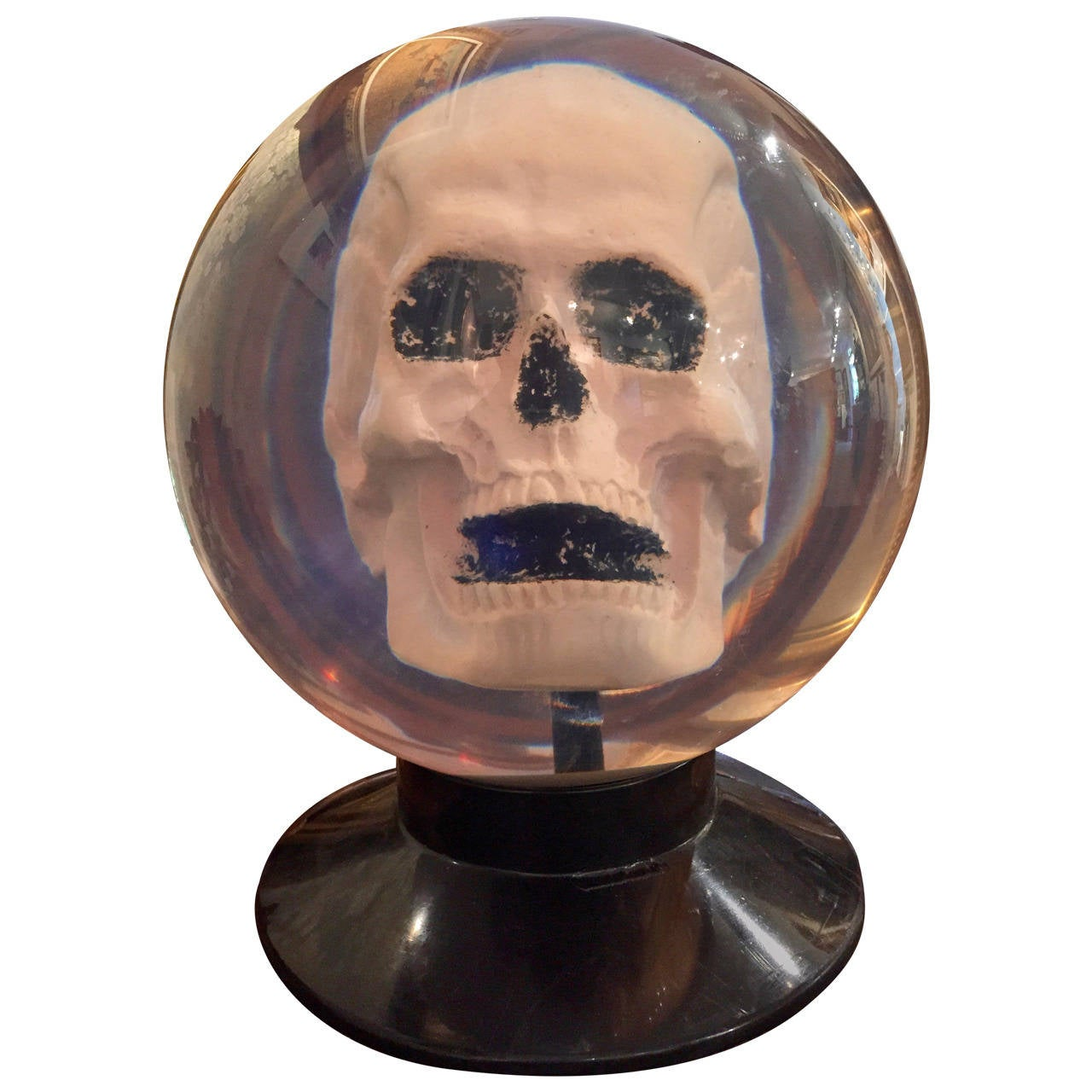 Your Very Own Plaster Skull Encased In A Clear Un Drilled