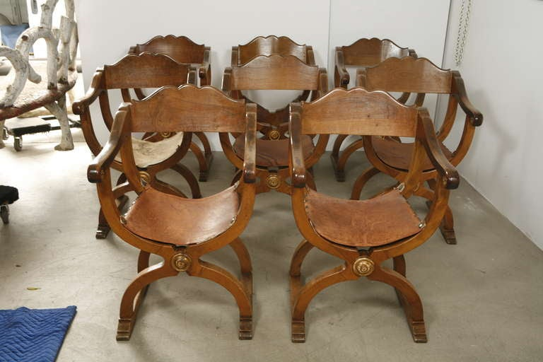 A set of eight walnut Florentine renaissance-style fauteuils for dining