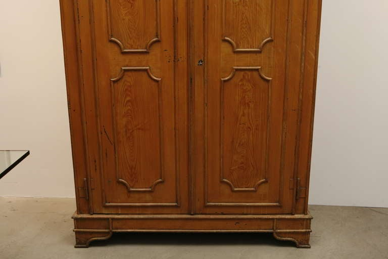 19th Century Pair of Painted Wood Grain Metal Armoires For Sale