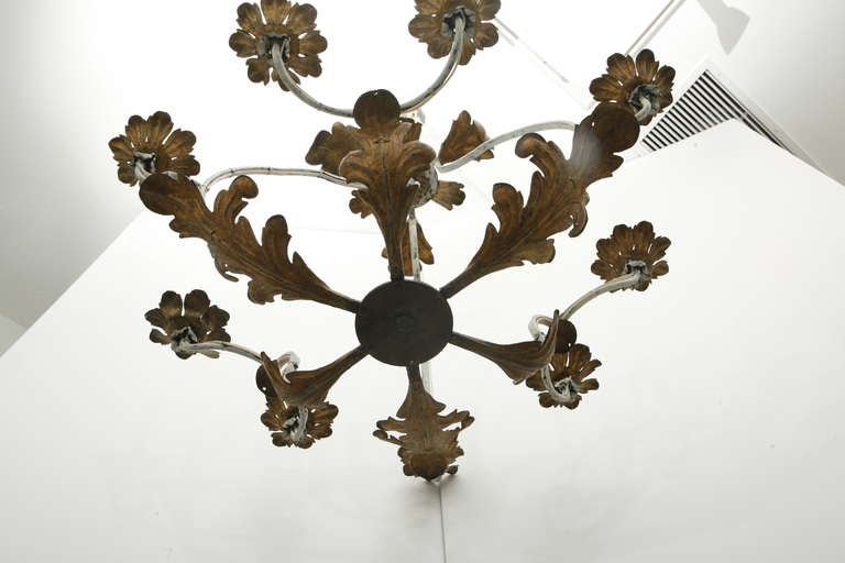 Wrought Iron Gilt Tole Chandelier 6