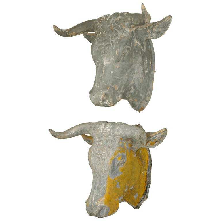 pair of 19th c french tetes de taureau bull heads at 1stdibs. Black Bedroom Furniture Sets. Home Design Ideas