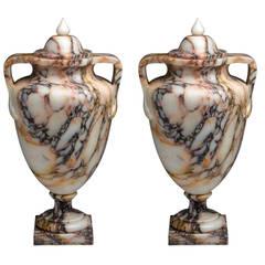 Pair of Marble Vases