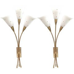 Pair of Elegant Wall Sconces Attributed to Maison Arlus