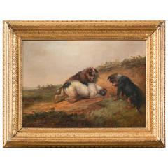 George Armfield - 19th Century Sporting Art