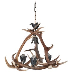 Early 20th Century Stag's Horn, Four-Light Chandelier